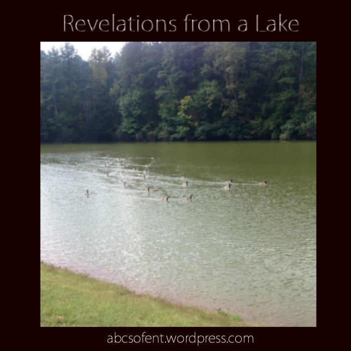Revelations from a Lake